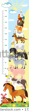Height measurement chart with farm animals in background Stock photo © colematt