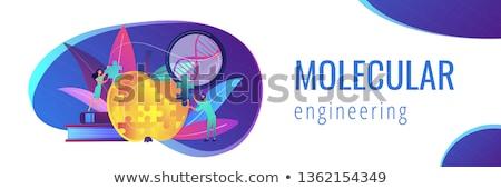 molekularny · łańcucha · kopia · przestrzeń · ilustracja · model · technologii - zdjęcia stock © rastudio