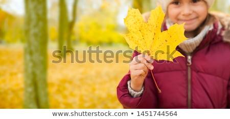 Bambina foglia d'acero autunno infanzia stagione Foto d'archivio © dolgachov
