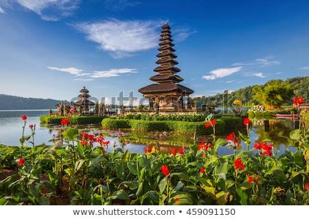 Bali templo flores lago água Indonésia Foto stock © galitskaya