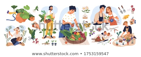 farming man and woman harvesting farmers vector stock photo © robuart