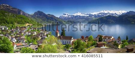 Lago Svizzera view alpi cielo acqua Foto d'archivio © borisb17