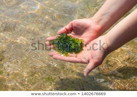 Genç kadın el ele tutuşarak taze yeşil kahvaltı öğle yemeği Stok fotoğraf © dashapetrenko