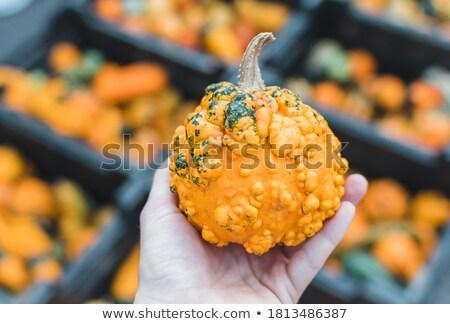 Bahçıvan eller taze organik gıda gıda Stok fotoğraf © lightpoet