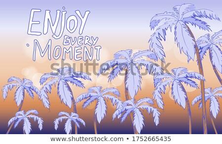 Inspirado desfrutar momento laranja azul Foto stock © robuart