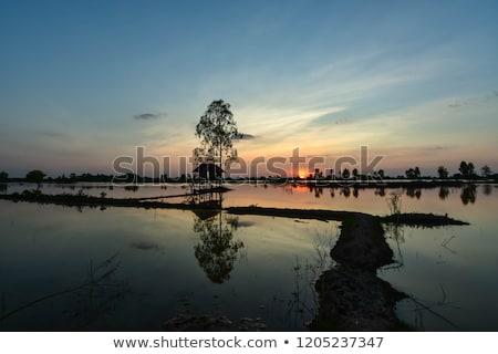 Nehir ev muson Tayland yağmurlu sezon Stok fotoğraf © travelphotography