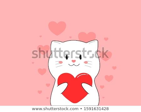 cat holding heart stock photo © irinavk