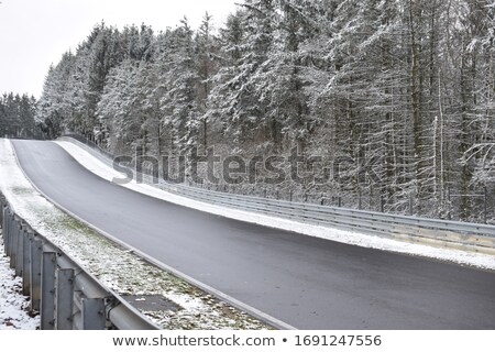Blizzard forêt lourd chutes de neige montagne neige Photo stock © skylight