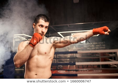 muscle boxer shaped man fist to camera Stock photo © lunamarina
