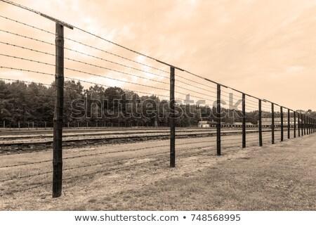 Filo recinzione concentrazione campo Polonia costruzione Foto d'archivio © Arsgera