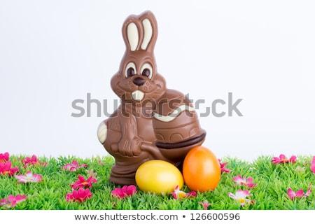Wielkanoc zając czekolady kolorowy malowany jaj Zdjęcia stock © ivonnewierink