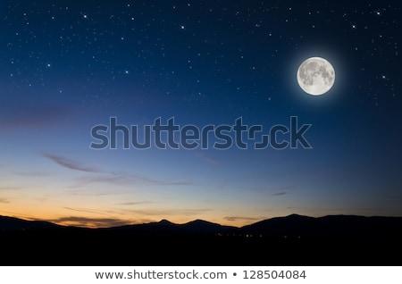 noche · luna · árboles · fondo · montana - foto stock © sirylok
