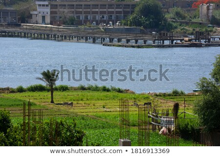 Nile scenery at Giza Stock photo © prill