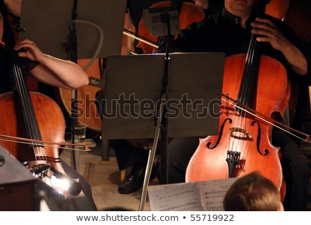 two violoncello in orchestra stock photo © Mikko