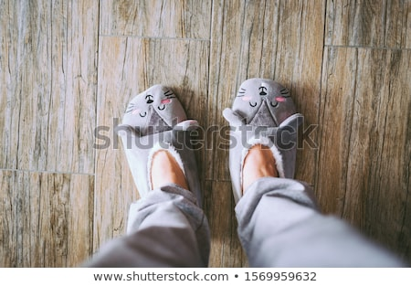 Gyermek ház házi cipők izolált fehér otthon Stock fotó © Grazvydas