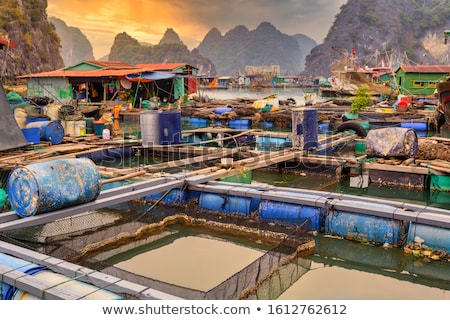 Floating fisherman's village in ha long bay Stock photo © michaklootwijk