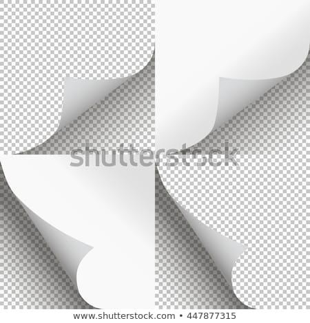 シーズン メイプル 色 白 工場 ストックフォト © tab62