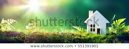 Ház vektor épület természet terv otthon Stock fotó © djdarkflower