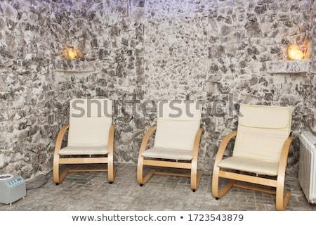 Minéral sel cristal bois Rock blanche Photo stock © grafvision