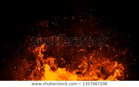 lareira · lenha · ardente · fogo · madeira - foto stock © reicaden
