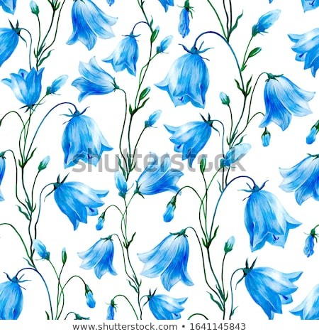 decorative floral pattern with bluebells stock photo © heliburcka