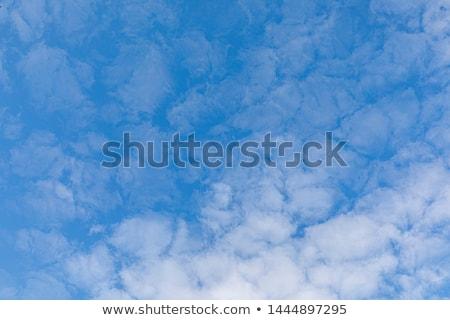 Hemel harmonisch wolk structuur licht schoonheid Stockfoto © meinzahn