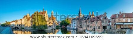 伝統的な 建物 ベルギー 曇った 空 花 ストックフォト © jenbray