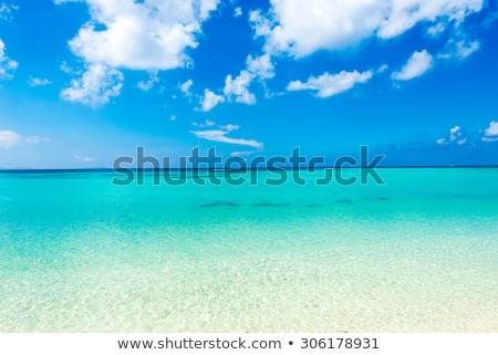 Deniz zümrüt yeşil su doku yaz Stok fotoğraf © shihina