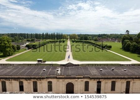 Nagyszerű legelő park körül kastély Franciaország Stock fotó © wjarek