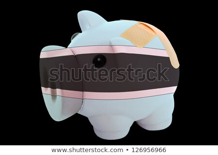 bankrupt piggy rich bank in colors of national flag of botswana  Stock photo © vepar5