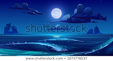 Moonlit Night - Sea Rock Landscape Stock photo © ankarb