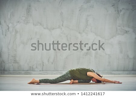 Adormecido cisne ver bico Foto stock © kimmit