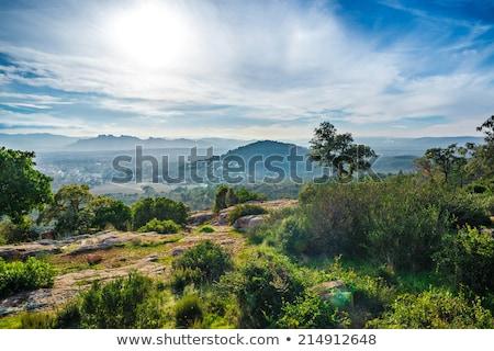 lave · champs · mousse · couvert · roches · eau - photo stock © ivonnewierink
