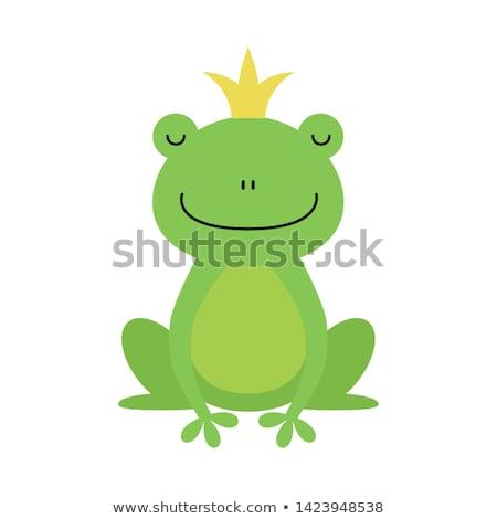 Cartoon изолированный лягушка корона искусства красный Сток-фото © ulyankin