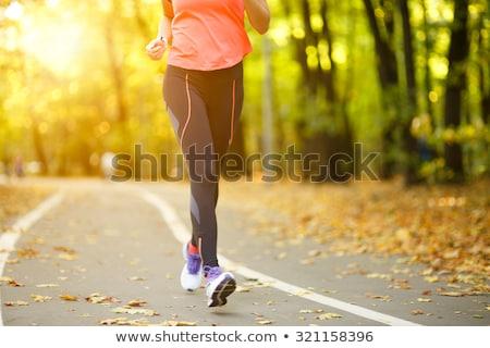 Stock fotó: Sétál · fut · lábak · erdő · kaland · testmozgás