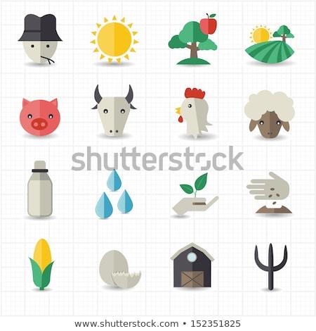 農業 種子 ウェブサイト サークル アイコン ストックフォト © Anna_leni