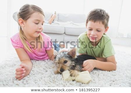 Cute silblings with their puppy on rug Stock photo © wavebreak_media