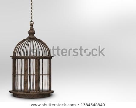 Open gold birdcage. An empty birdcage Stock photo © orensila