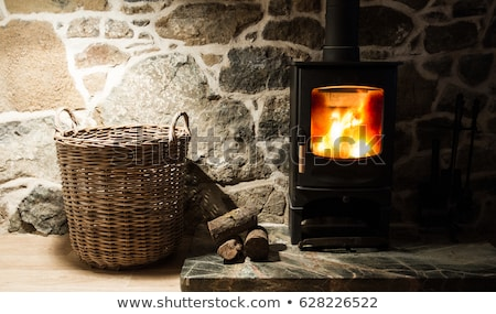wooden logs in stove with flame stock photo © cherezoff