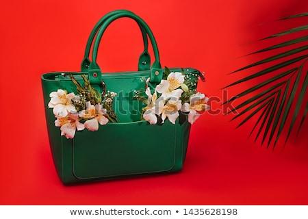 Sorprendido mujer embrague bolsa estudio Foto stock © filipw