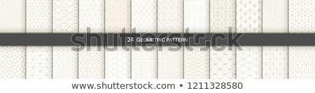 Stockfoto: Meetkundig · naadloos · vector · patroon · abstract · Blauw