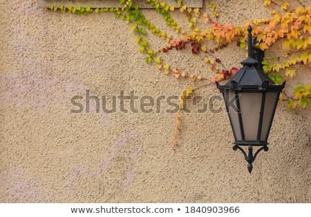 verde · ferro · strada · lanterna · muro · vetro - foto d'archivio © petrmalyshev