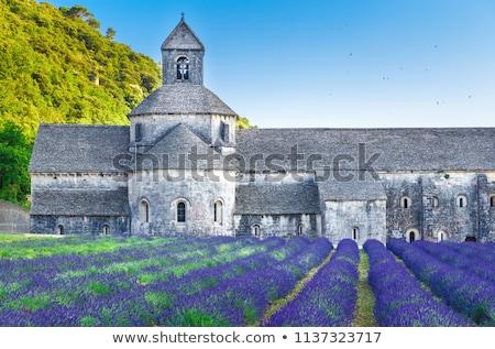Abbaye bâtiment monde Voyage architecture Photo stock © meinzahn