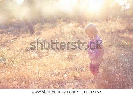 Nino naturaleza nino salud campo Foto stock © zurijeta