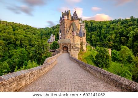 Köprü kale Prag Çek Cumhuriyeti bitmiş haçlar Stok fotoğraf © LucVi