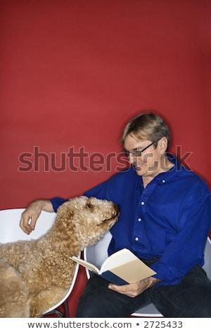 Man reading with goldendoodle dog. stock photo © iofoto