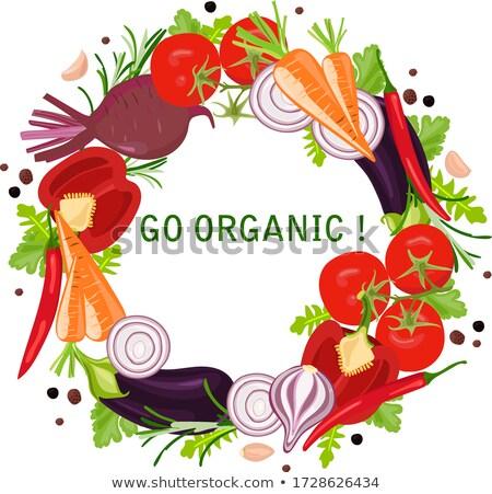 Bio garlic from bio herbs garden Stock photo © Peteer