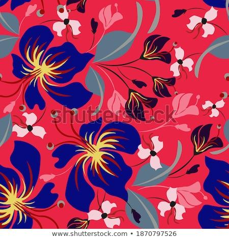 Floral ornamento rojo neutral moderna Foto stock © almagami