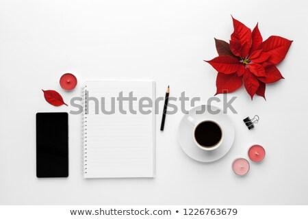 girl with flower poinsettia Stock photo © adrenalina
