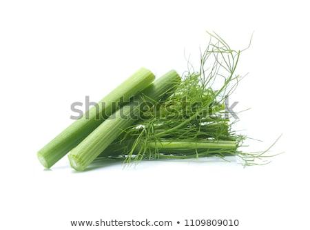 friss · édeskömény · fa · asztal · asztal · levelek · kés - stock fotó © Digifoodstock
